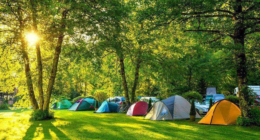 Cắm trại dã ngoại