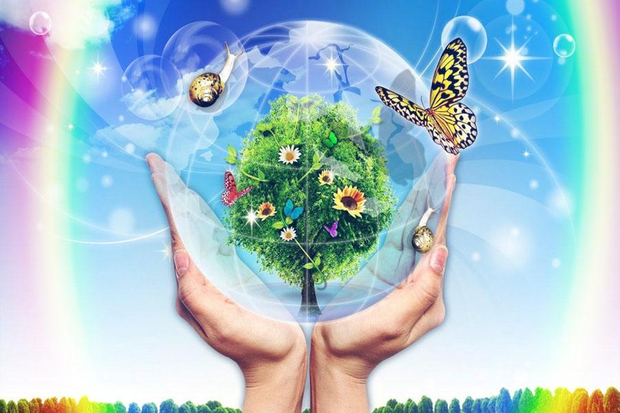 TOP 10 công ty môi trường uy tín tại Đồng Nai