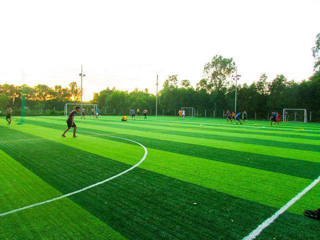 TOP 10 sân bóng đá nhân tạo chất lượng tại Biên Hòa – Điểm Đến Của Mọi Tín Đồ Bóng Đá