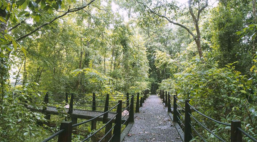 Vườn quốc gia Cát Tiên